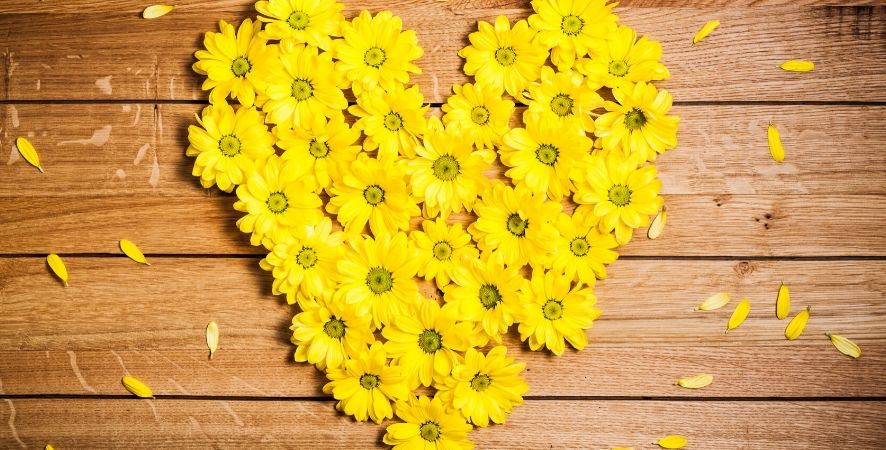 Lovely and Meaningful Flowers for Valentine's Day